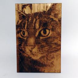 Photograph on Wood