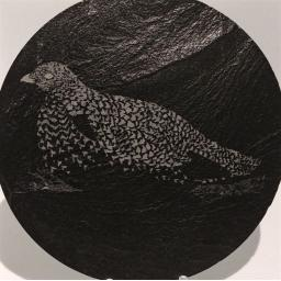 10cm Round Slate Grouse Coasters