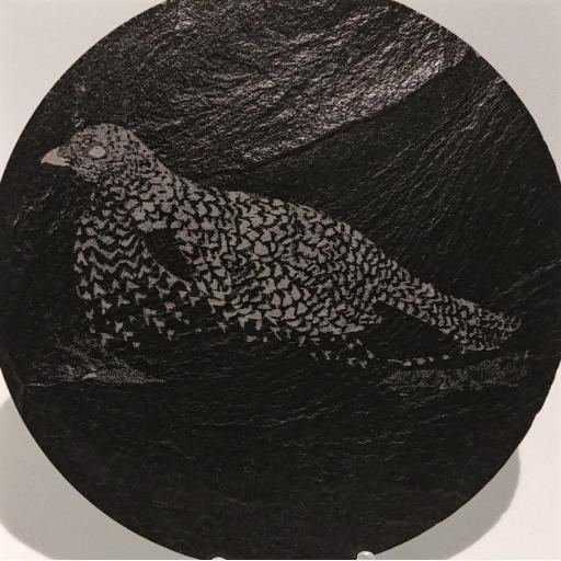 10cm Round Slate Grouse Hen Coasters