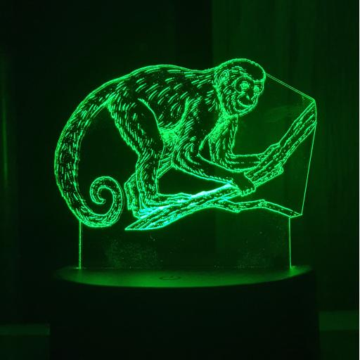 Monkey 3D LED Lamp